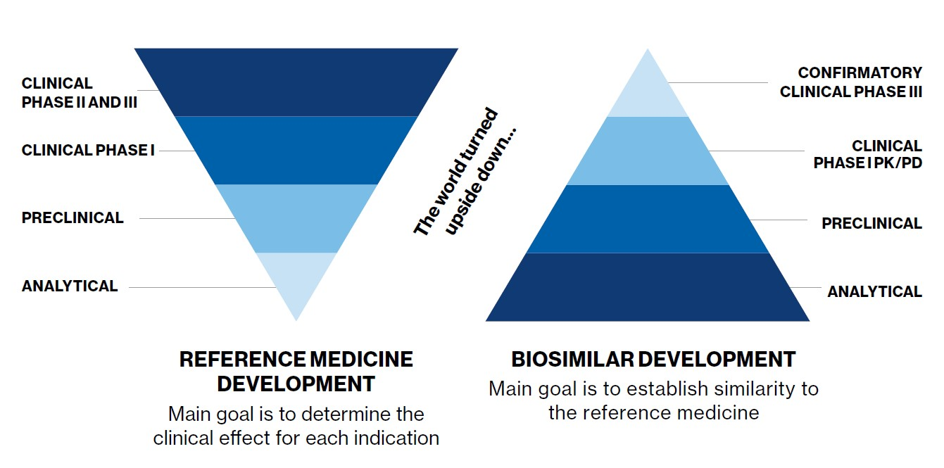 The four stages of the biosimilar development program