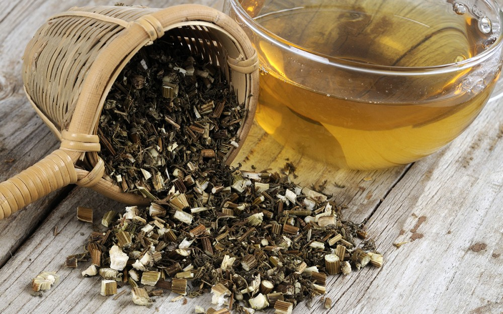 Traditionally used in Chinese medicine for treating fever, the dried leaves and stem are of Artemisia annua are most commonly brewed as tea. However, treating malaria with teas could contribute to development of resistance in the parasites.